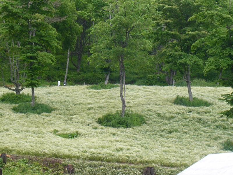 farm-in-nature