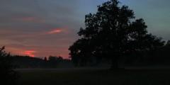 die-nacht_beautyjagd