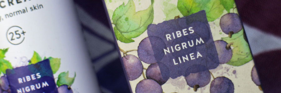 kivvi-ribes-nigrum-linea-english