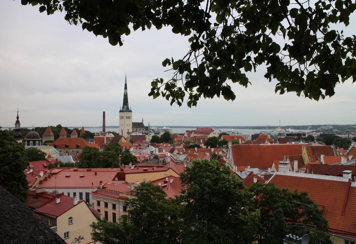 Tallinn View Domberg