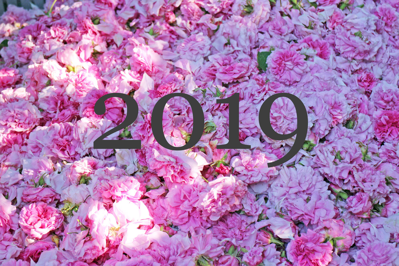 Jahresrueckblick 2019